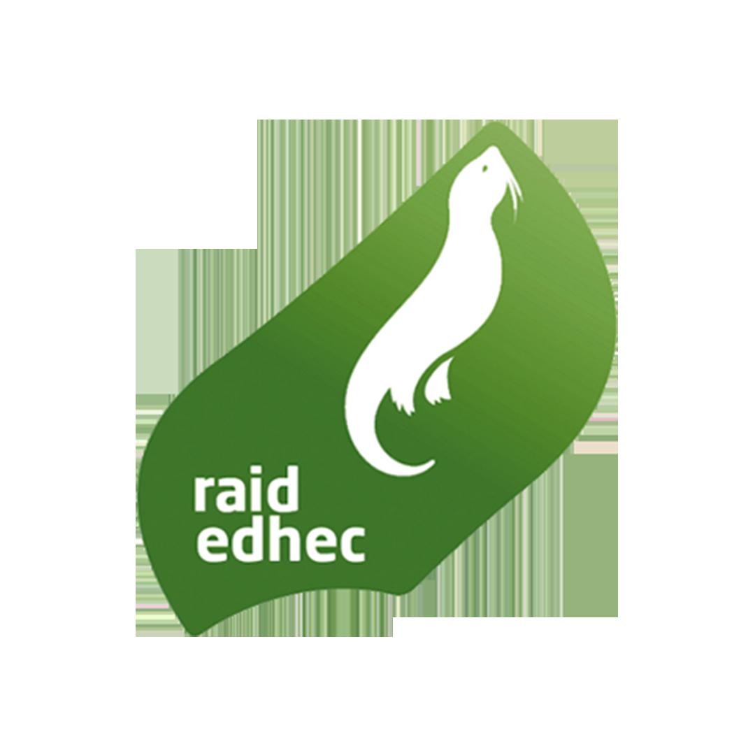 Logo Raid
