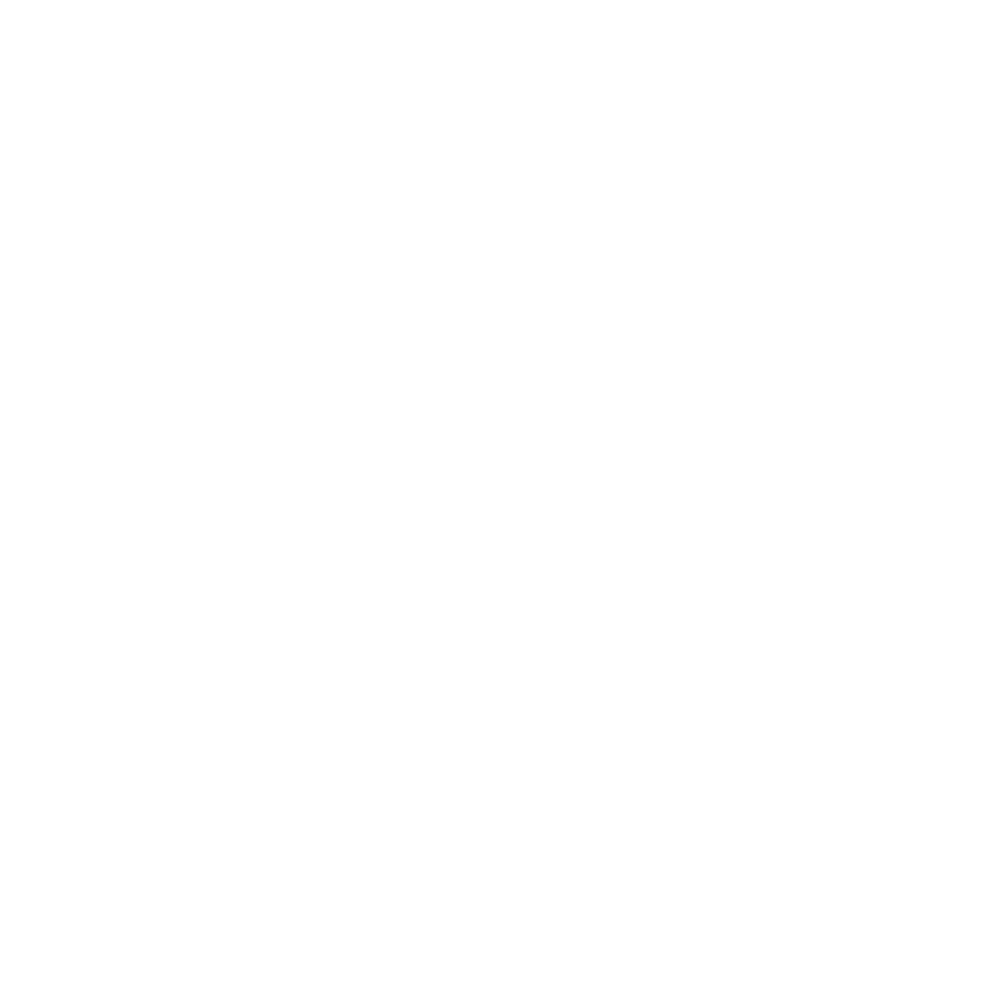 Logo Trail blanc